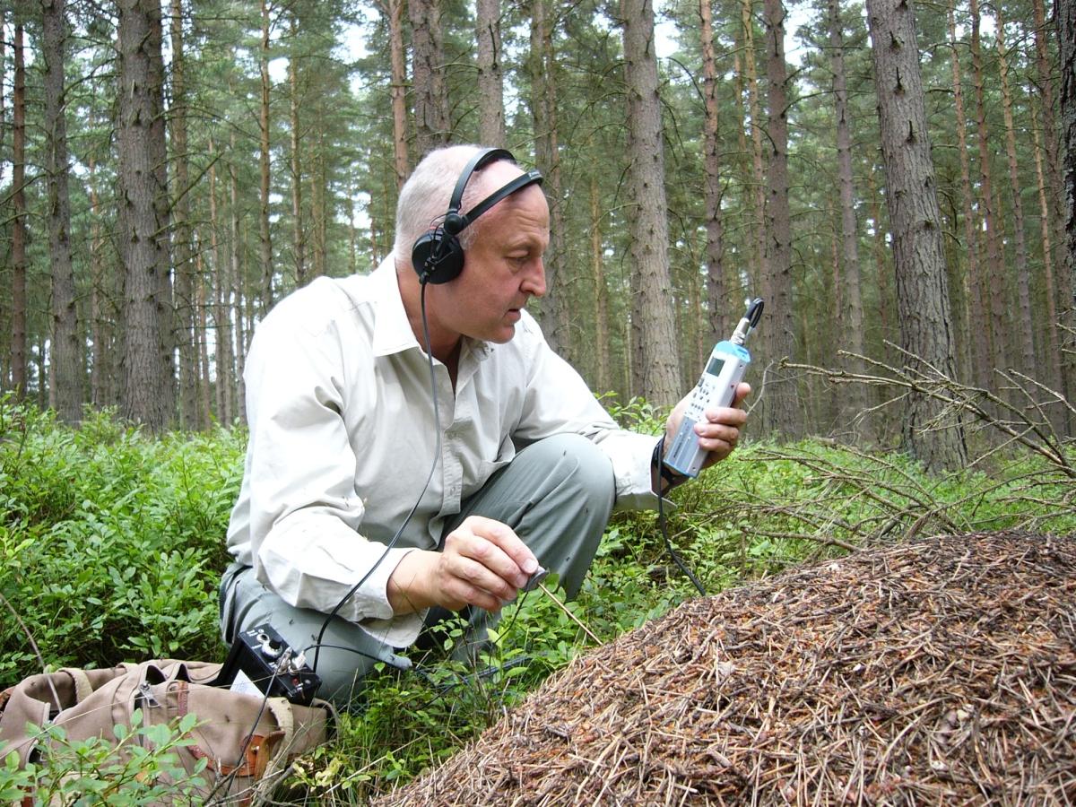 RecordingAnts